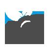 Search Engine Optimization (SEO) Marketing Service Company